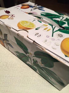 lemonpack